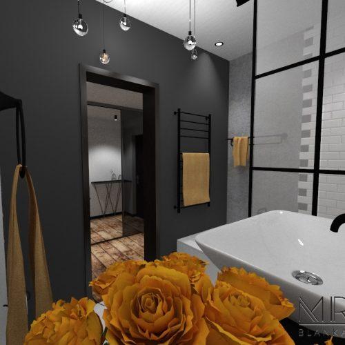 kawalerka Vintage-łazienka5